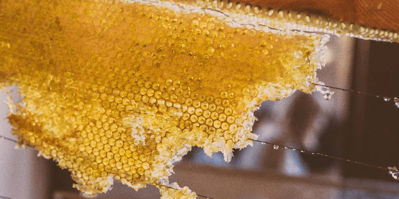 honey-as-a-superfood